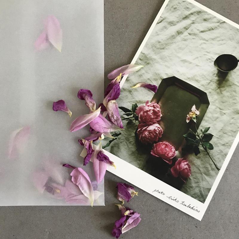 季節の葉書 薔薇封筒付き 限定品