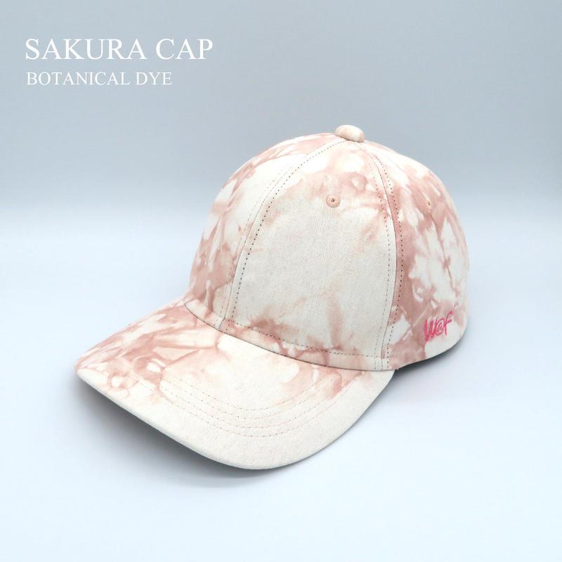 SAKURA CAP:1905MensCurveBrim
