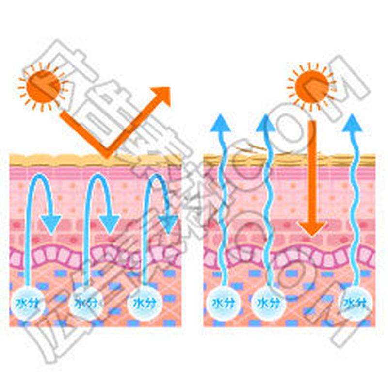 紫外線対策の比較図