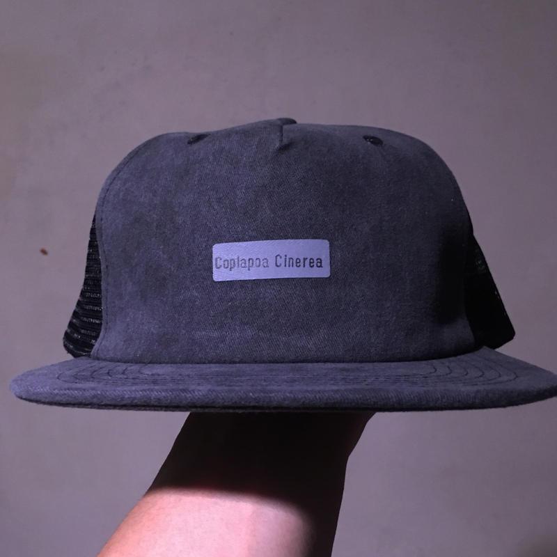 Copiapoa Cinerea Mesh Hat