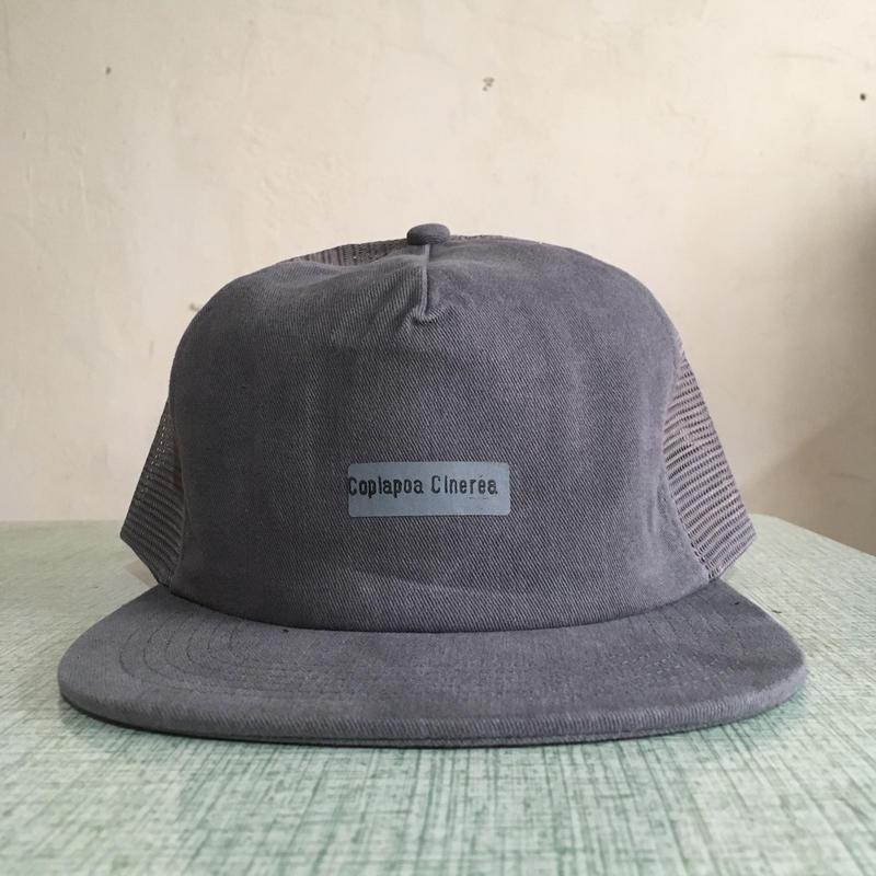 030 Copiapoa Cinerea Mesh Hat