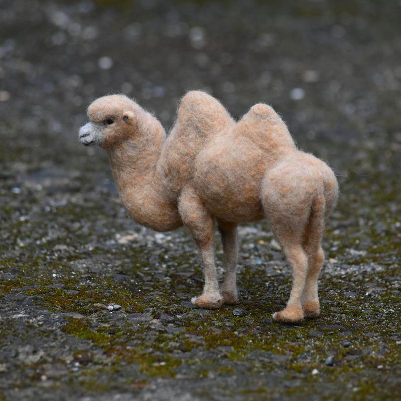 フタコブラクダ 羊毛フェルト