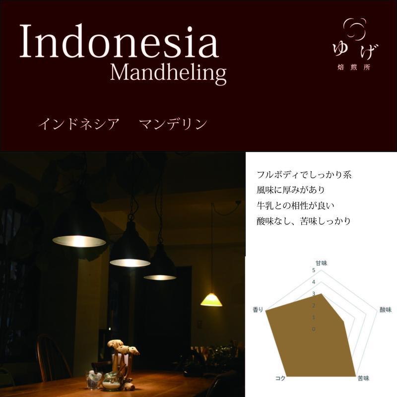 インドネシア   マンデリン 200g