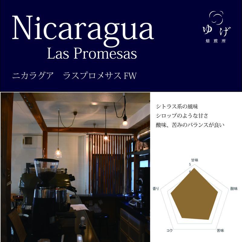ニカラグア    ラスプロメサスFW 100g