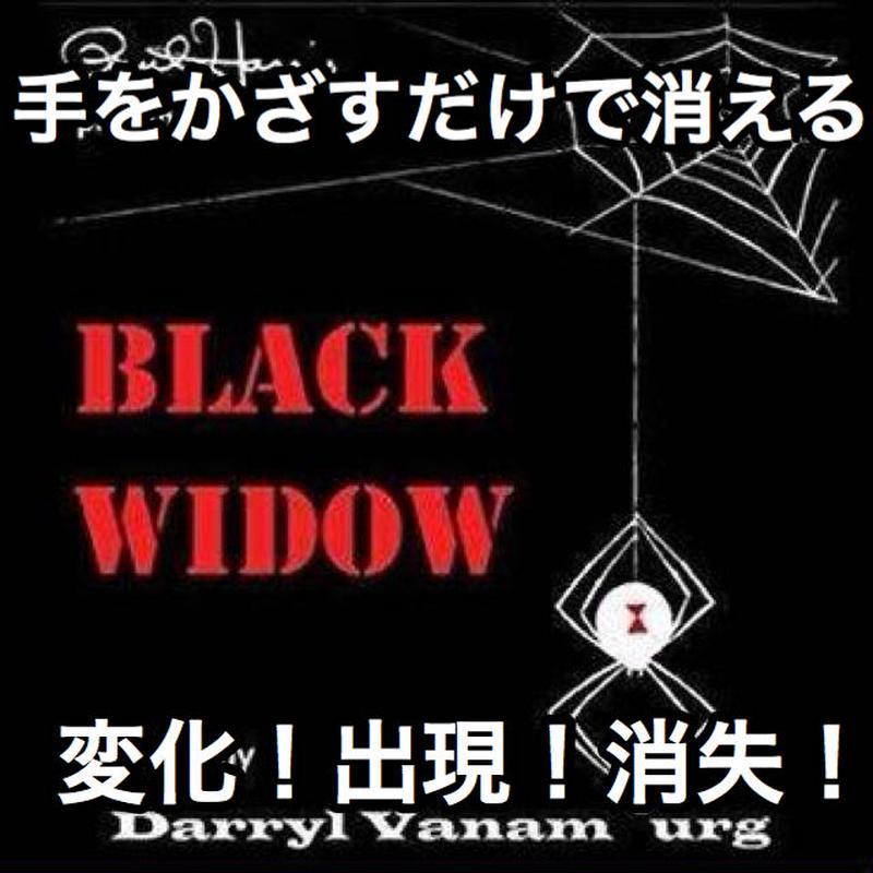 ブラック・ウィドウ【X0024】Black Widow by Darryl Vanamburg