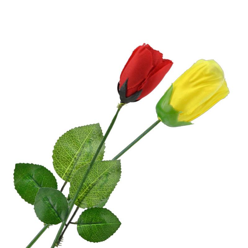 カラーチェンジングローズ<バラの花の色が変わる>【G0492】Color Changing Rose