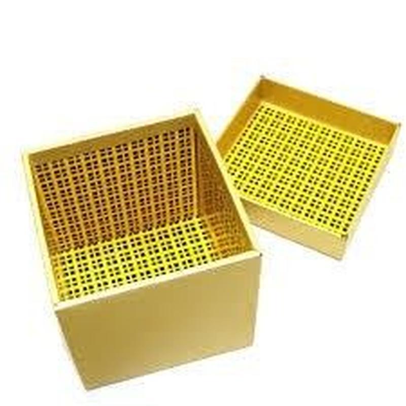 ザ・ギフト(ゴールド・限定版)<精巧にできた究極の予言小箱>【Y0070】The Gift Gold Limited Edition by Angelo Carbone