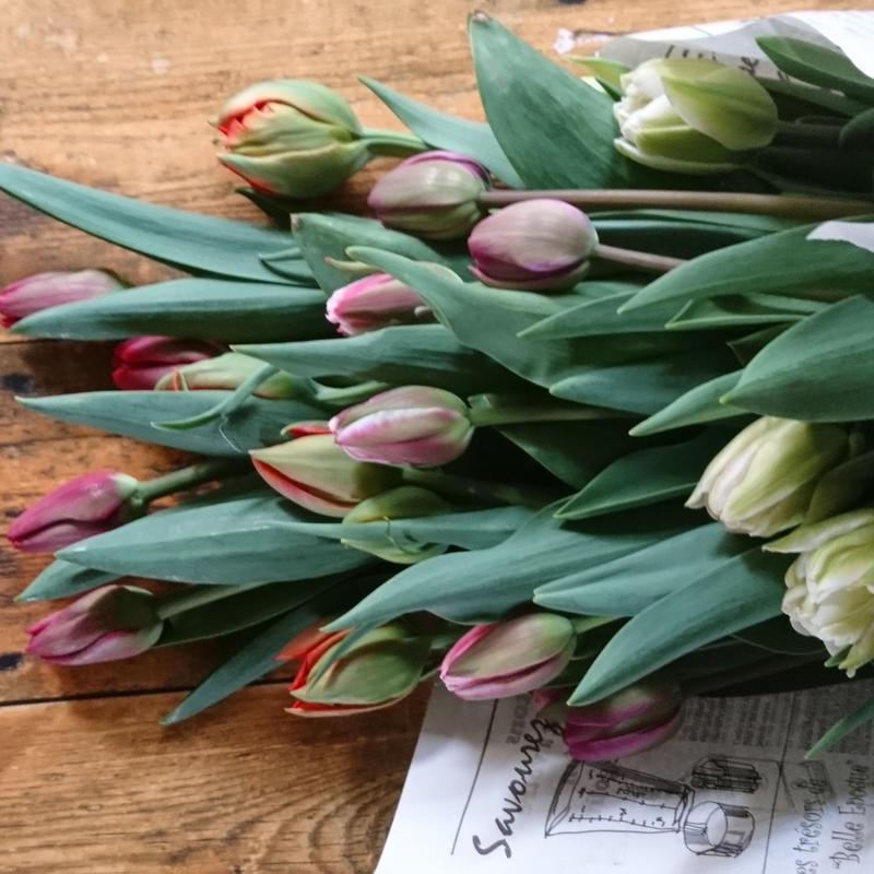 花のある生活(簡易包装20本入り)