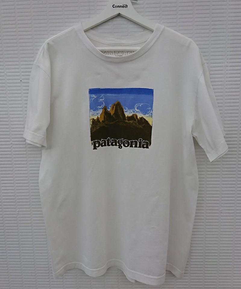 patagonia オーガニックコットンTシャツ(237)