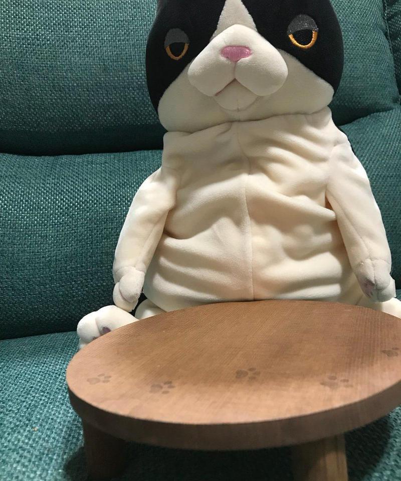 ネコ様用ちゃぶ台