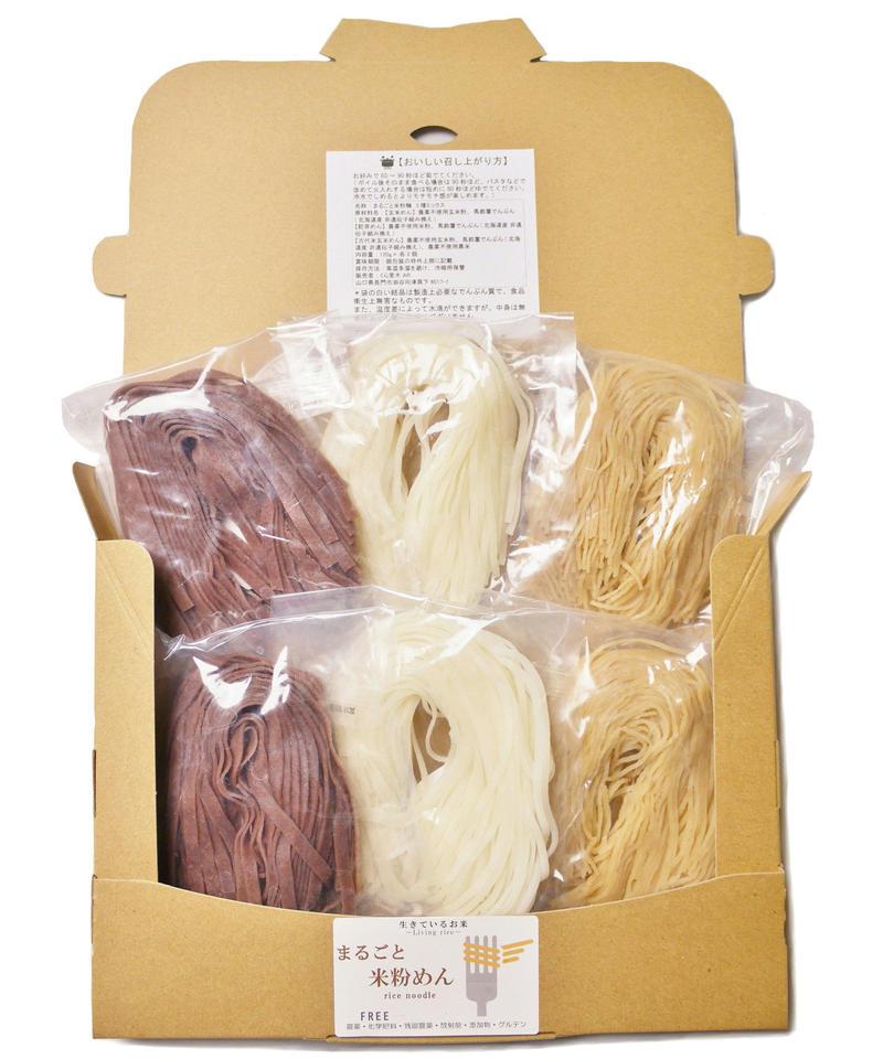 3種のまるごと米粉麺 夏季限定バージョン 3種ミックス計6食(玄米めん2食、つるっと米粉めん2食、古代米玄米めん2食)