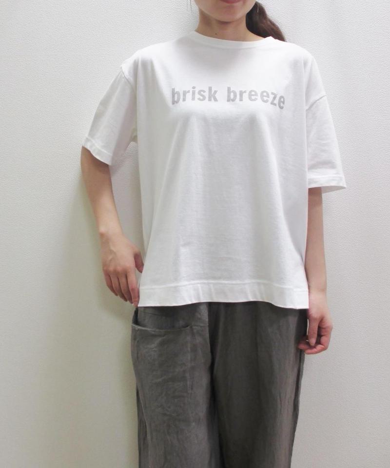 【2019SS新作】[大人のおしゃれ手帖掲載] YARRA briskロゴビッグTシャツ