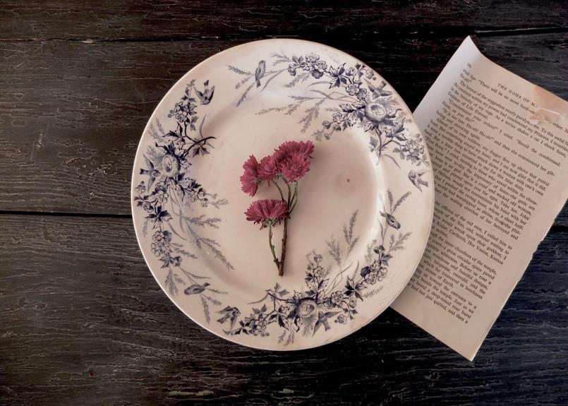クレイユ エ モントロー (Creil et Montereau) 鳥・花柄リム皿