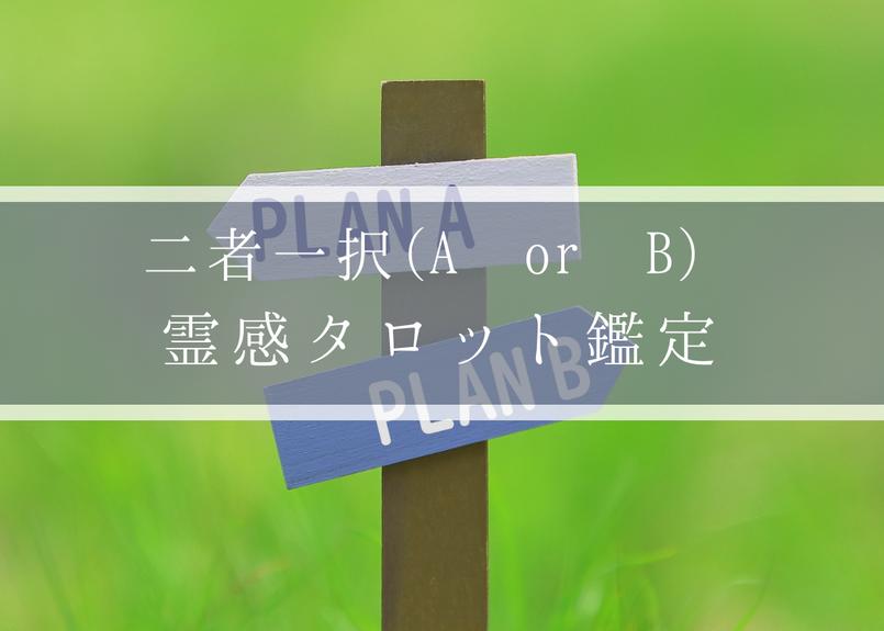 【二者一択】【霊感タロット占い】A or B、どちらを選べばいい?答えが出ないあなたへ