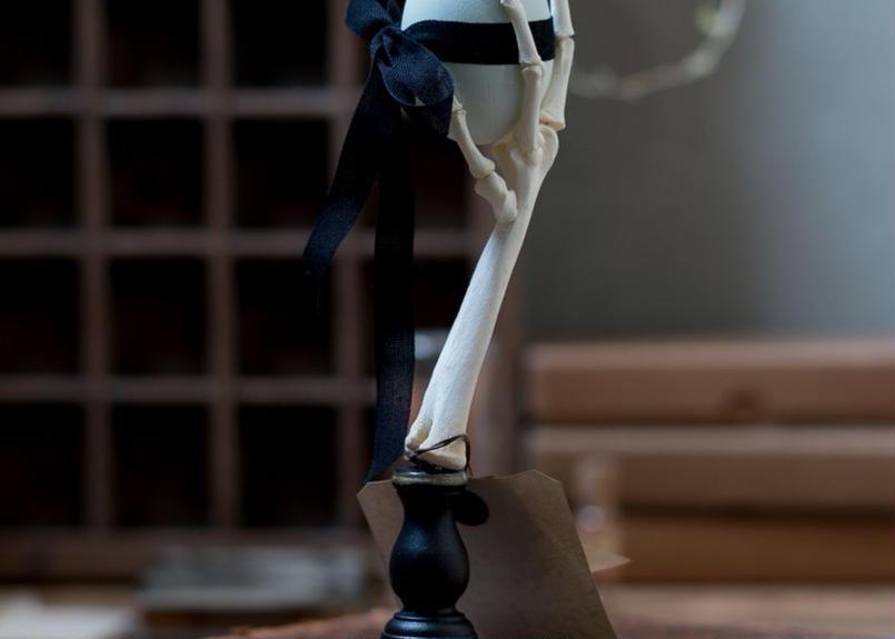 Bird skeletal specimen -鶏足の骨格標本- 右脚ブラック
