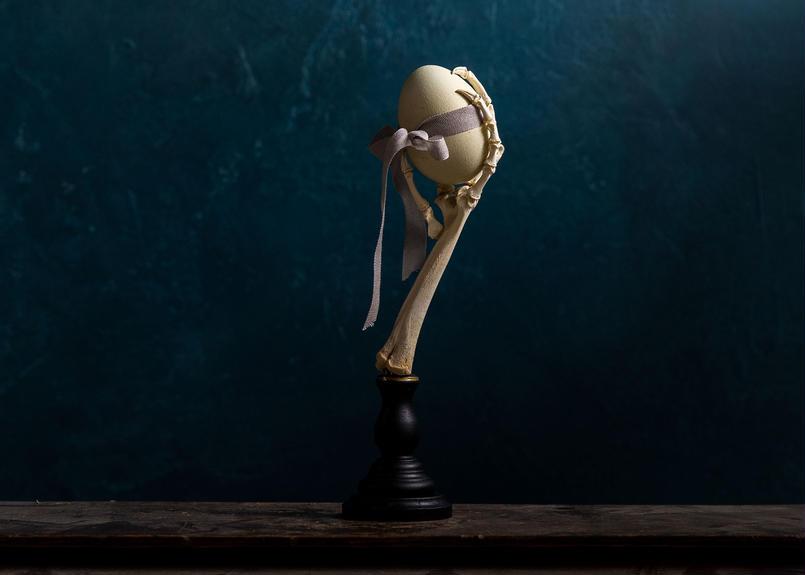 Bird skeletal specimen -鶏足の骨格標本- 卵を掴む骨格