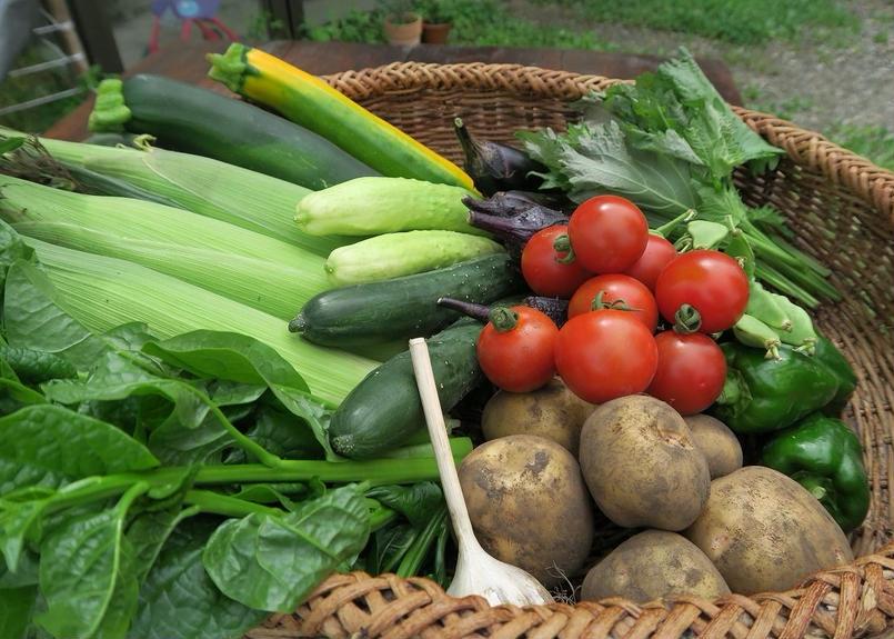 野菜宅配セット(大) 3~5人向き 送料無料