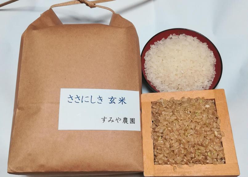 ささにしき 玄米