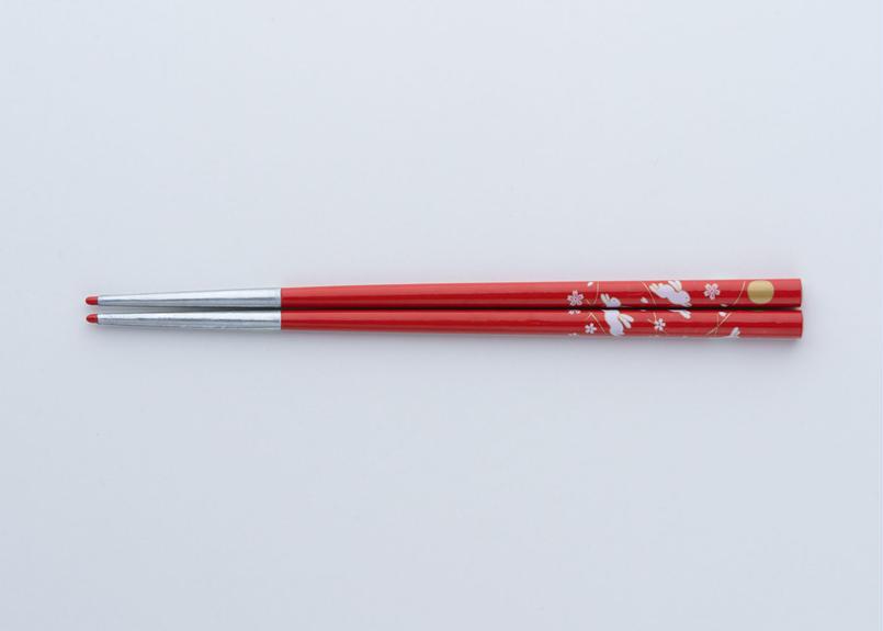 送料無料 サプリ箸 うさぎ柄 赤 19.5cm