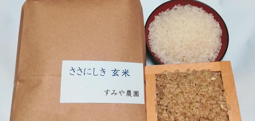ささにしき 玄米/白米