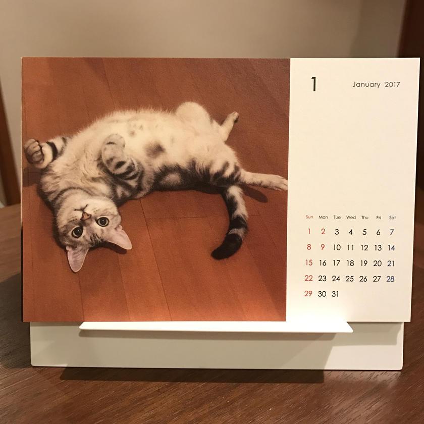 再入荷!2017 ネコ卓上カレンダー