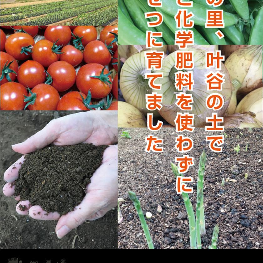 【3か月コース】農人たち野菜お任せパック