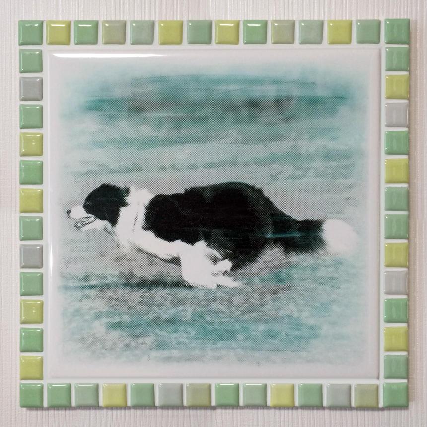 ブライトカラー/フレッシュグリーン(XL)◆Tile Picture Frame(XL)/Bright Tone/FRESH GREEN◆