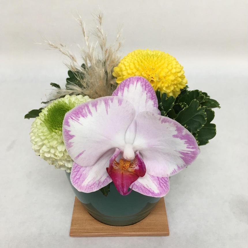 《花と漆器と色》雪月花(冬)