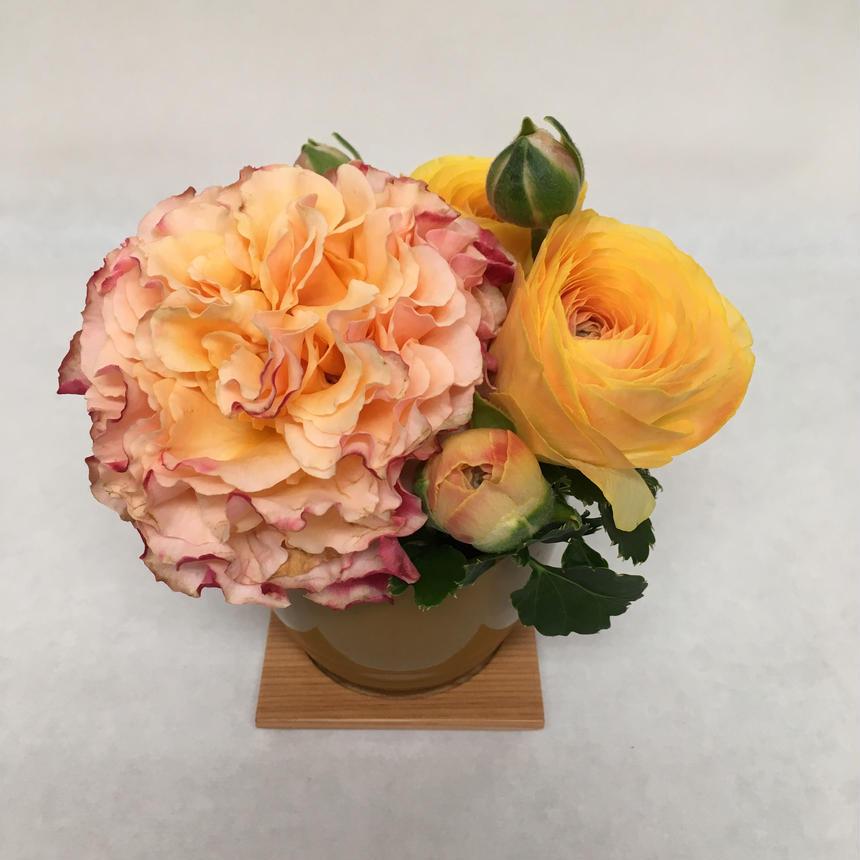 《花と漆器と色》出会い(春)