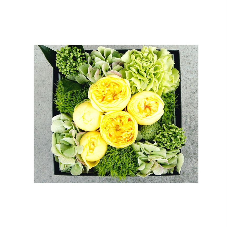 Box Flower イエロー