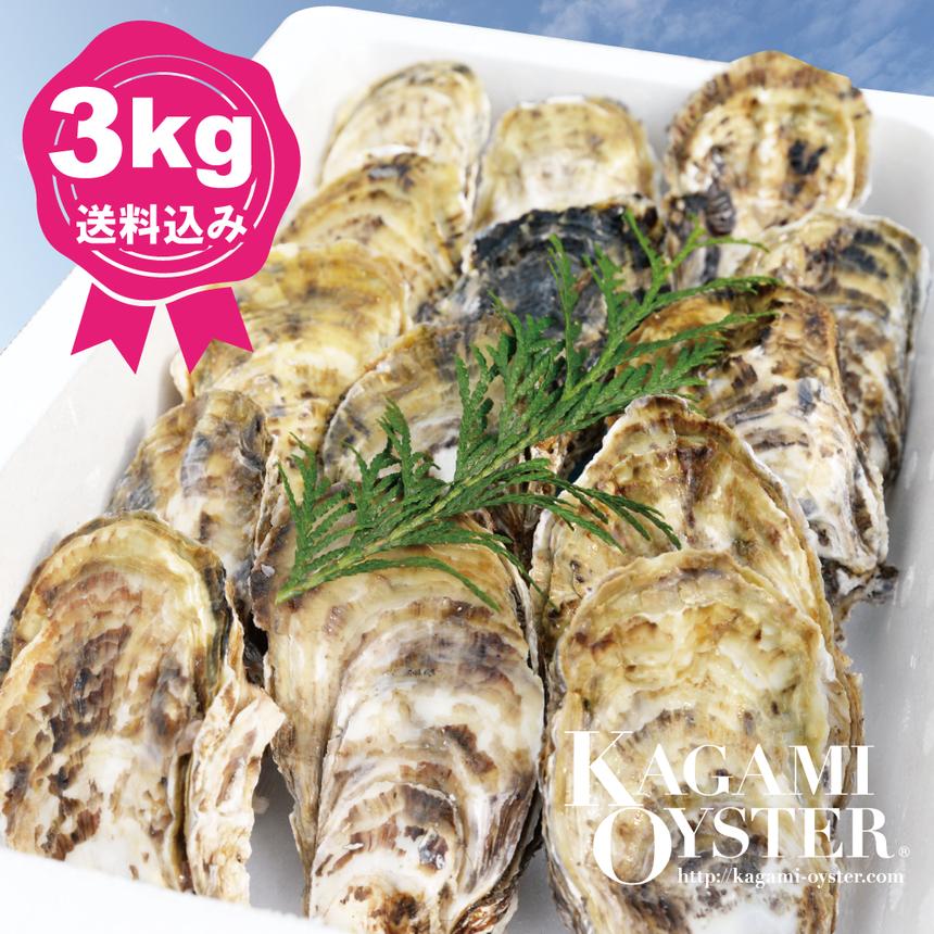 鏡オイスター よくばり3kgセット(殻付マガキ・加熱調理用)