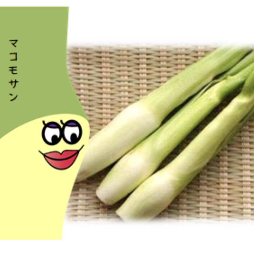 【スーパーフード?!神?お釈迦様?】マコモタケ(新潟県胎内市産1㎏)
