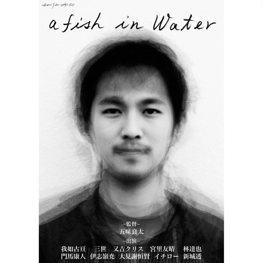 a fish in water (DVD)