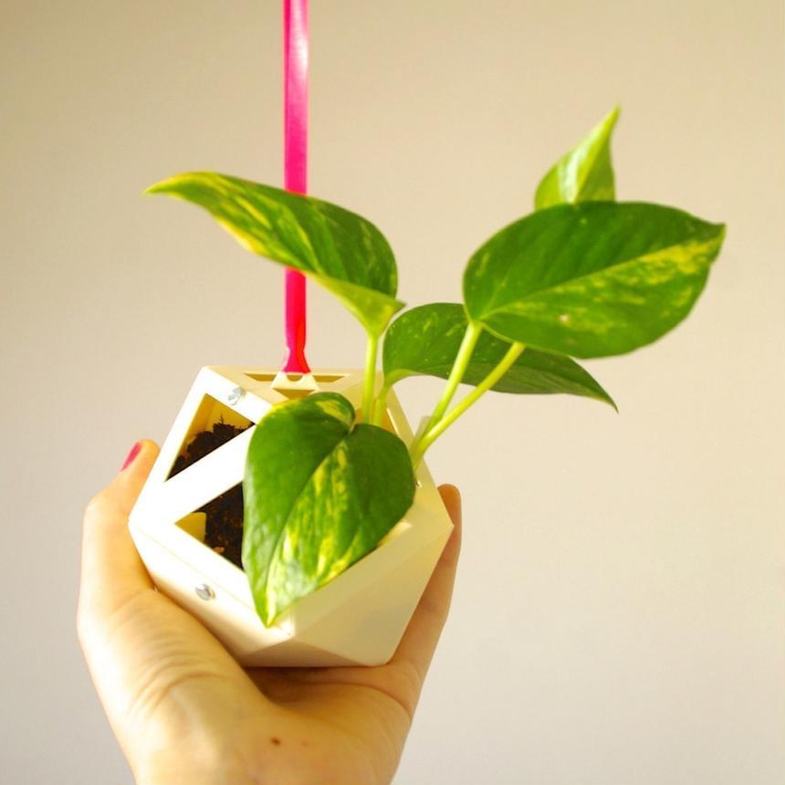 Mobile Garden DIY キット(ケース白)
