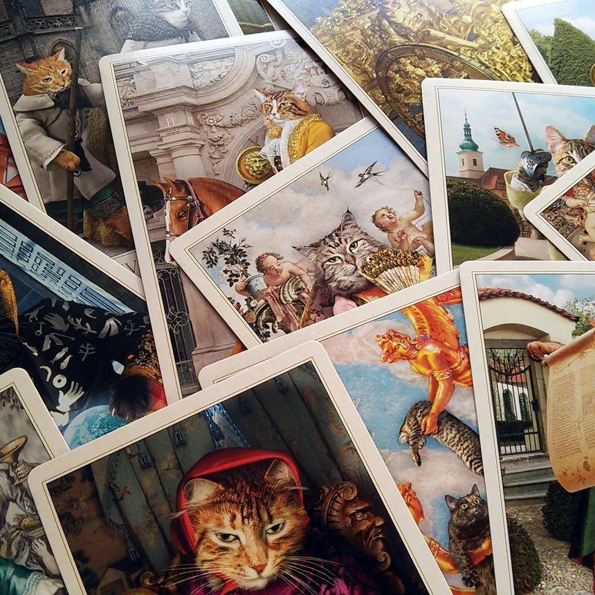 【限定入荷】バロック ボヘミアン キャッツ タロット   3rd. EDITION ◆The Baroque Bohemian Cats' Tarot