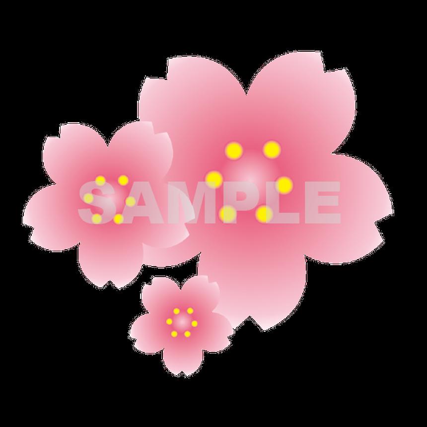 【POP素材】桜イラスト(ブーケ)