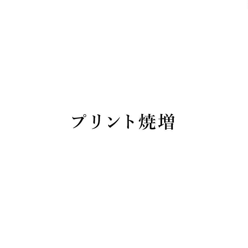 プリント焼増(送料込み)