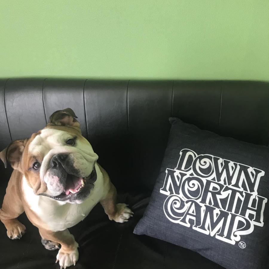 DownNorthCamp DenimCushion