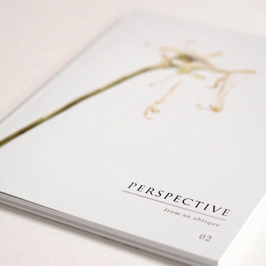 book『PERSPECTIVE -from an oblique- 02』
