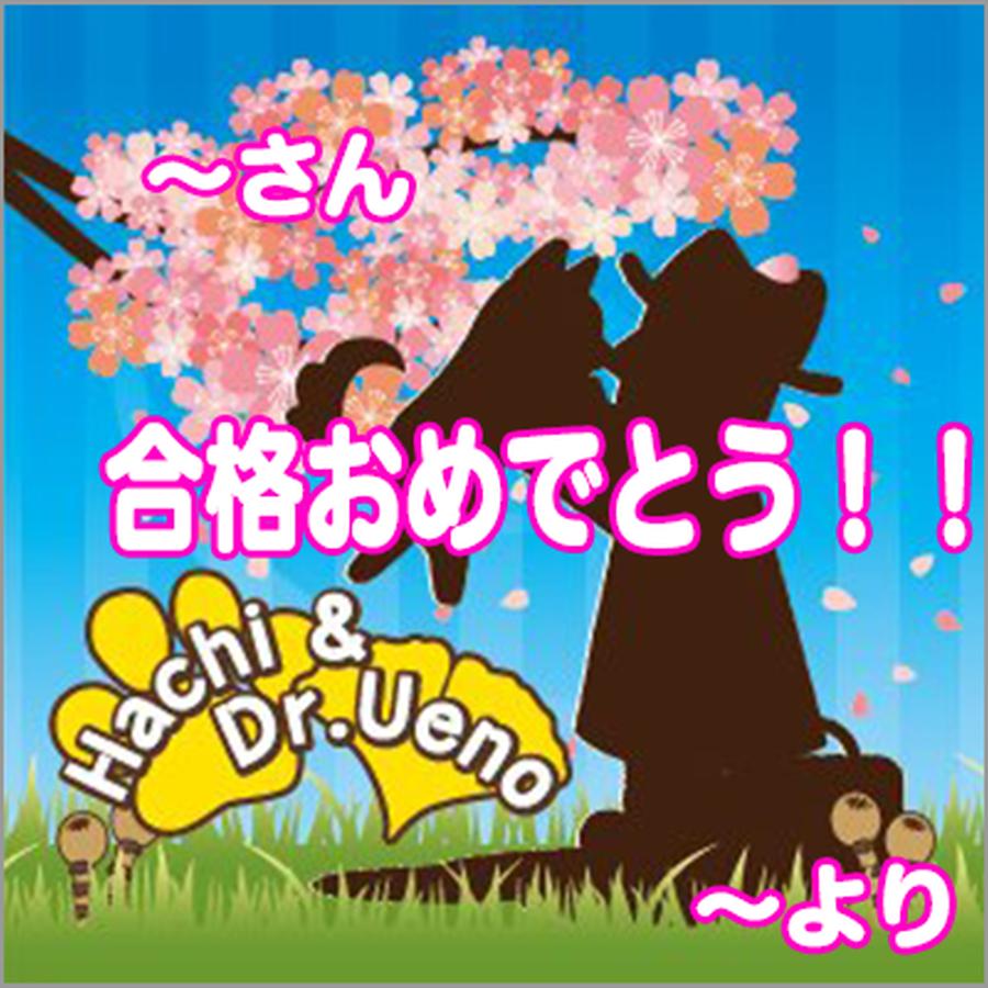 「Hachi&Dr.Ueno」合格祝いグリーティングカード