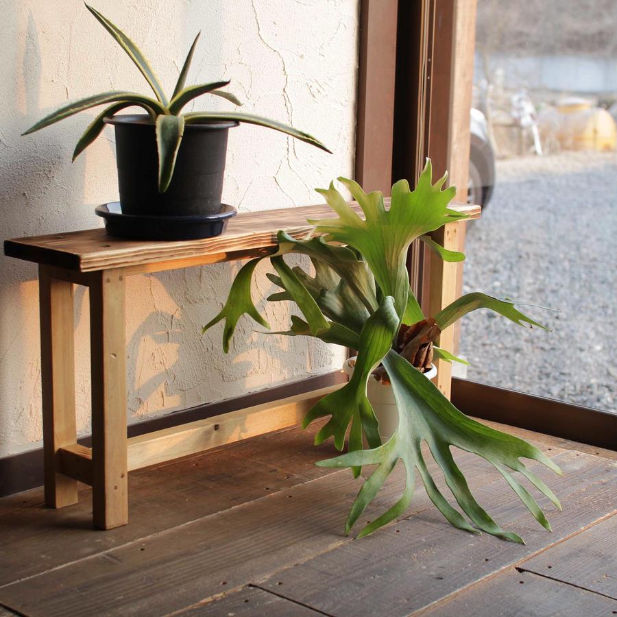 植物ディスプレイ用ミニベンチ