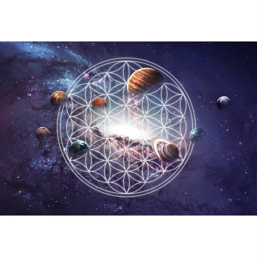 """flower of life & universe""  canvas print graphic picture (scp001)"
