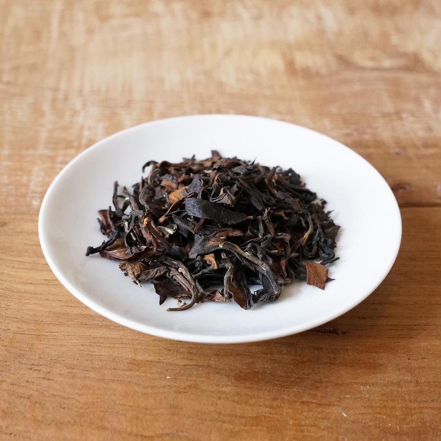 2017年9月30日開催|秋の茶摘み体験「秋だ!茶摘みだ!発酵だ!日本の紅茶をつくります編」