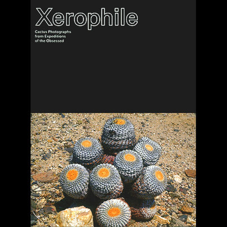 Xerophile / Cactus Store