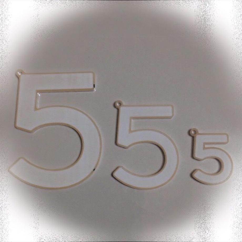 55a867613bcba9a04b002909