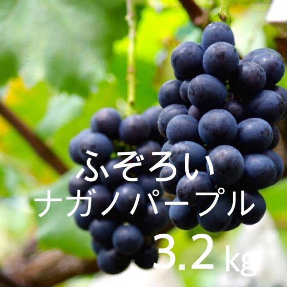 61290f9de50c0b599e12780b