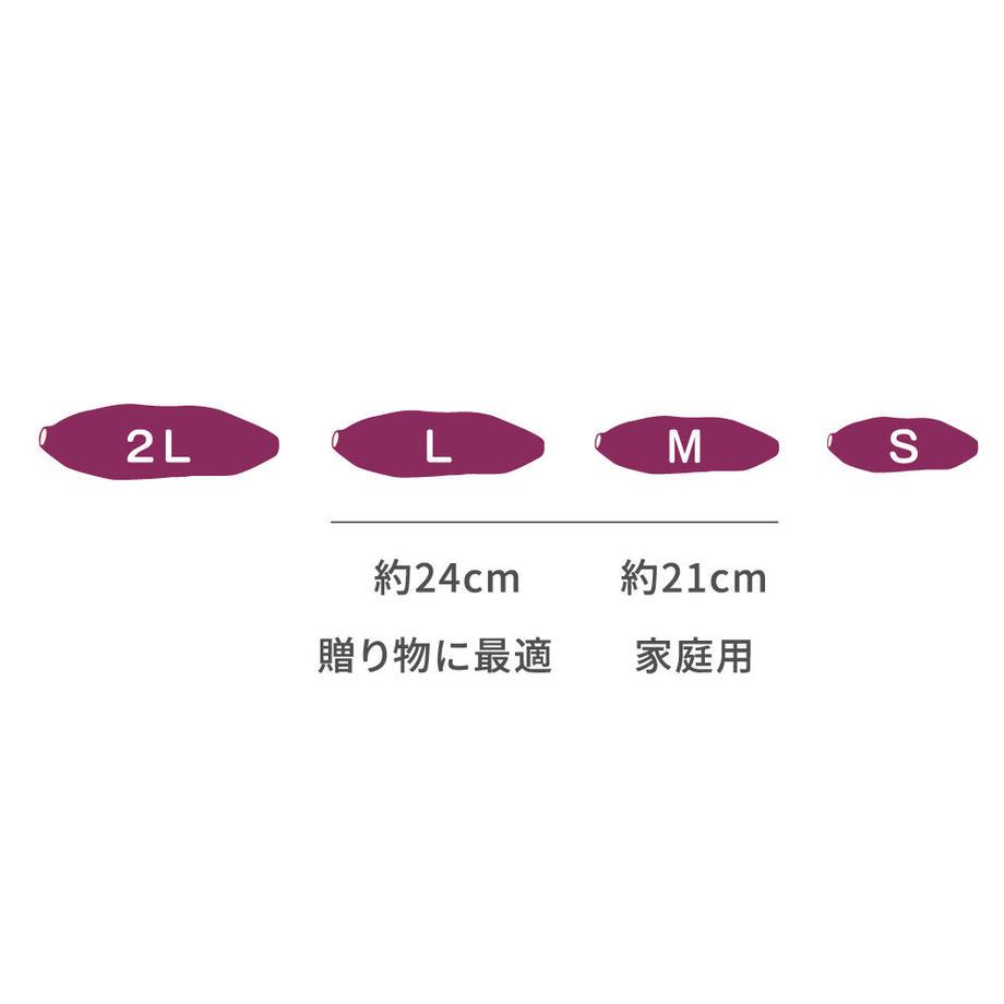 5f45fcb8d3f167321a232504