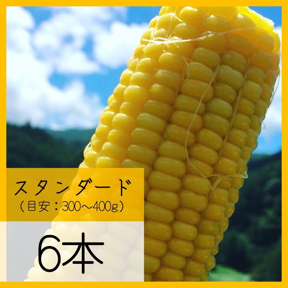 5ec71fda55fa0313d9db46ce
