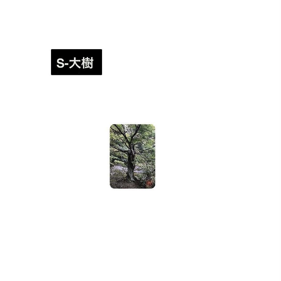 5f1fc732791d02526d41e731