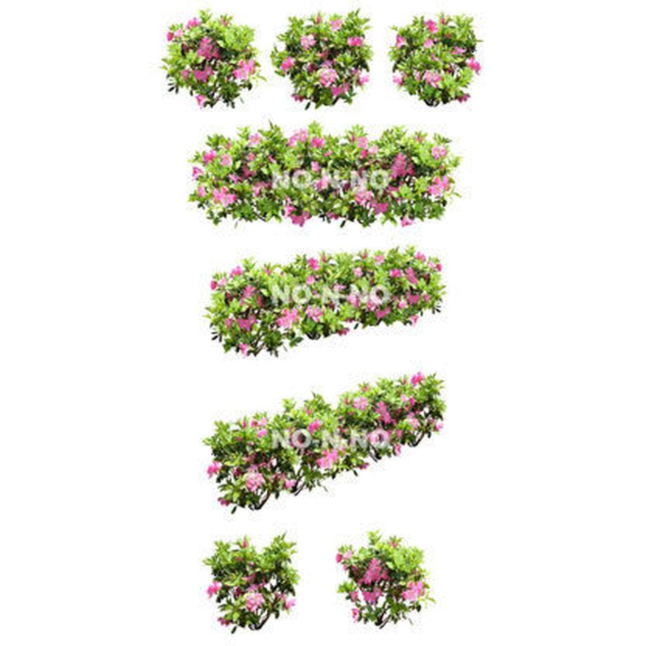5b6faf38ef843f40d90018d9